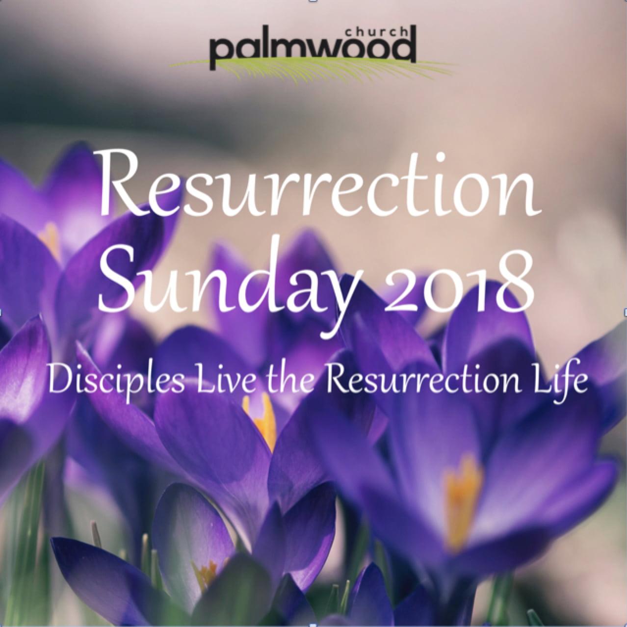 Disciples Live the Resurrection Life