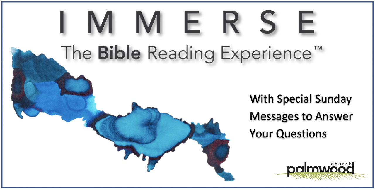 Immerse Bible Reading Experience -- Godly Sorrow